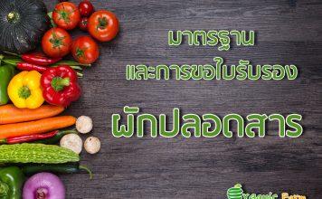 มาตรฐานและการขอใบรับรองผักปลอดสาร