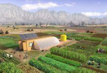 Farm from a box