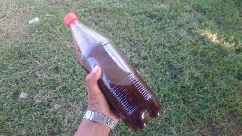 วิธีการปลูกแตงโมอินทรีย์