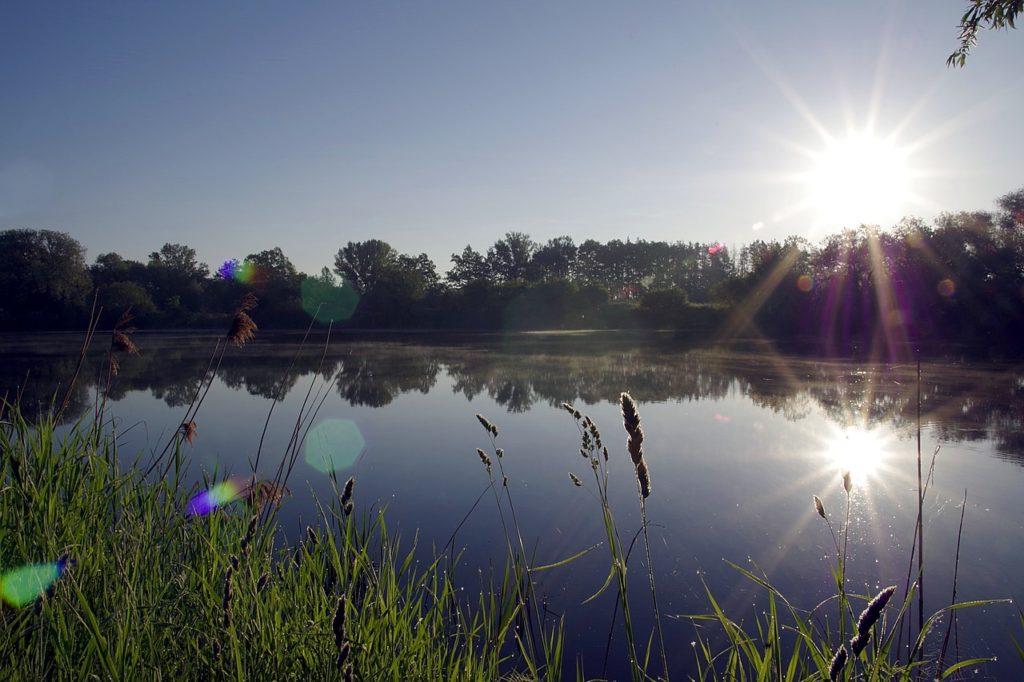 Cr images : pixabay.com